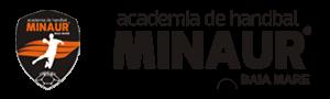 Academia de Handbal Minaur